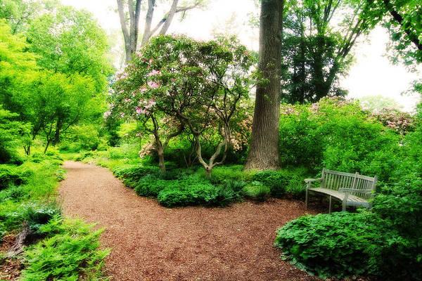 Photograph - Serenity Garden by Trina  Ansel