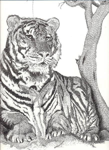 White Tiger Drawing - Serenity by Patrick Vnuk