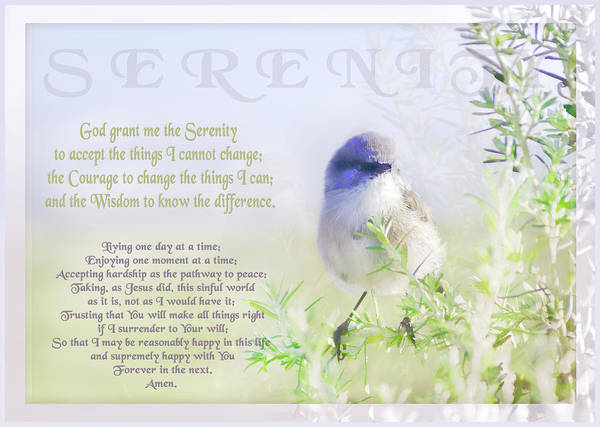 Prayers Photograph - Serenity Prayer by Holly Kempe