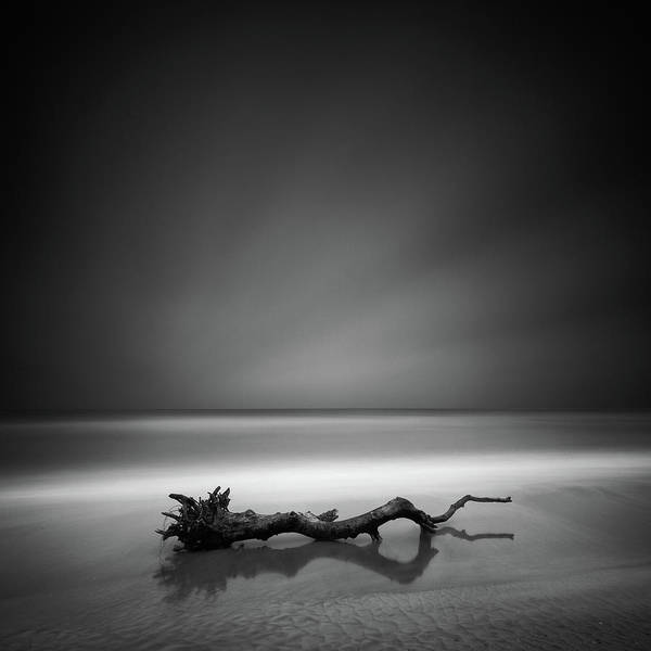 Shore Photograph - Serpent by Martin Rak