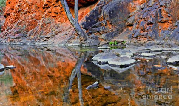 Central Australia Photograph - Serpentine Gorge Central Australia by Bill  Robinson