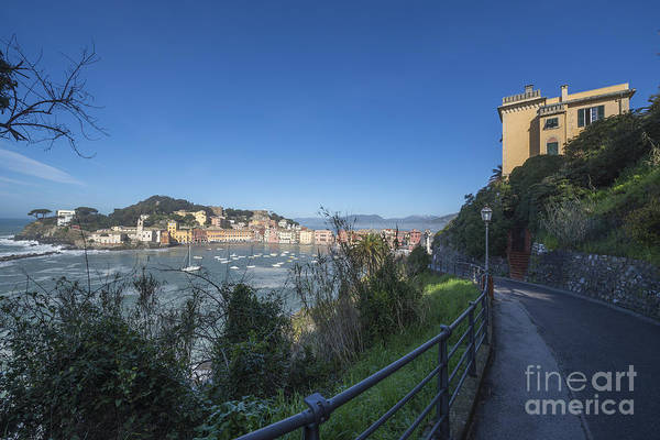 Sestri Levante Photograph - Sestri Levante And A Street by Mats Silvan