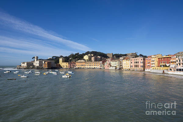 Sestri Levante Photograph - Sestri Levante With Blue Sky by Mats Silvan