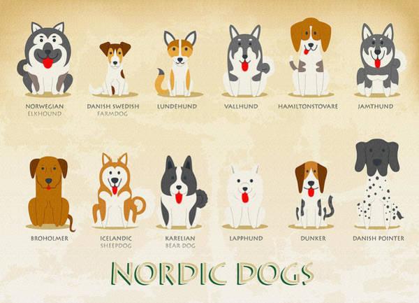 Icelandic Digital Art - Set Of Nordic Dogs by Don Kuing