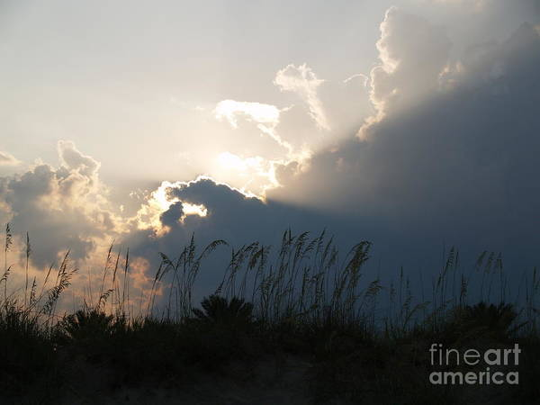 Photograph - Setting Rays At Sand Dunes by Robin Maria Pedrero
