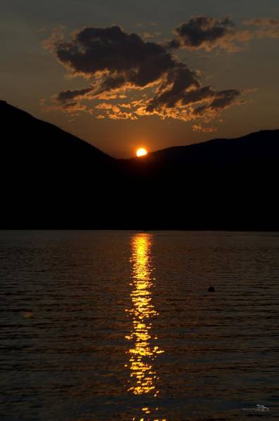Photograph - Setting Summer Sun 8-4-2014 by Guy Hoffman