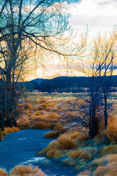Setting Sun At Rocky Mountain Arsenal_2 Art Print