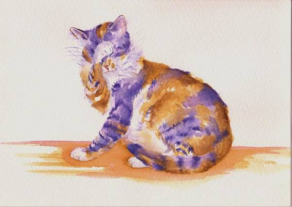Calico Kitten Wall Art - Painting - Seven Plus Four Is...? by Debra Hall