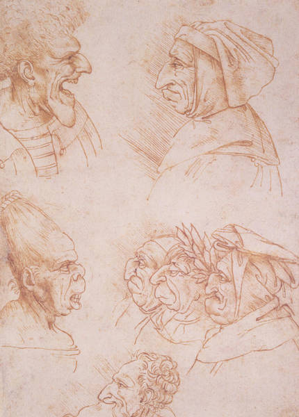Hook Drawing - Seven Studies Of Grotesque Faces by Leonardo da Vinci