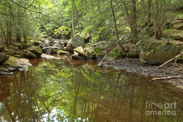 Photograph - Seven Tubs Creek by Adam Jewell