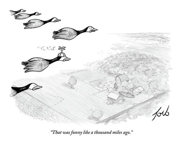 Wall Art - Drawing - Several Geese Fly In A V-formation by Tom Toro