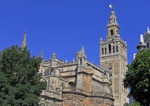 Photograph - Seville Cathedral by Tony Murtagh