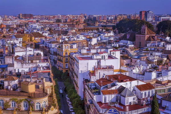 Photograph - Seville Cityscape by Joan Carroll