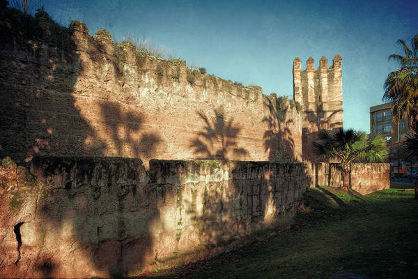 Photograph - Seville's Old Walls by Joan Carroll