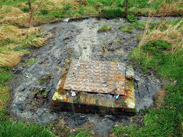 Drain Photograph - Sewage by Ian Gowland/science Photo Library
