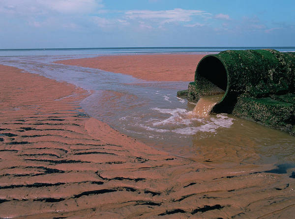 Wall Art - Photograph - Sewage Pipe On A Beach by Simon Fraser/science Photo Library