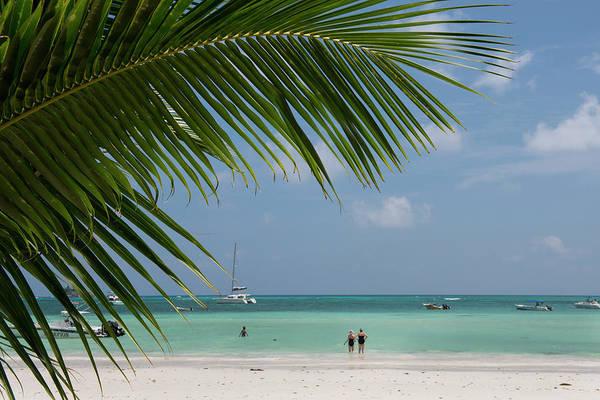 Oceanfront Photograph - Seychelles, Praslin by Cindy Miller Hopkins