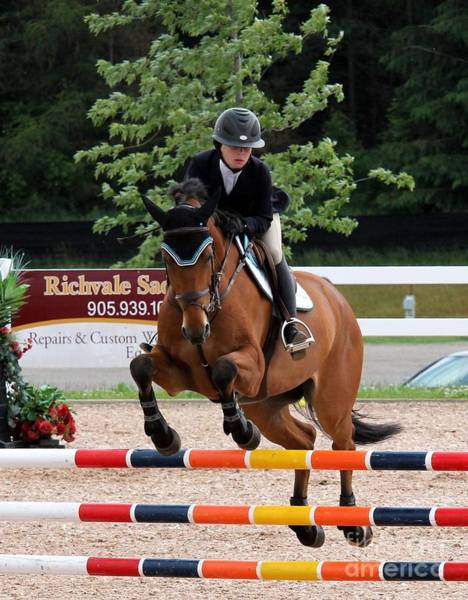 Photograph - Sfjumper20 by Janice Byer
