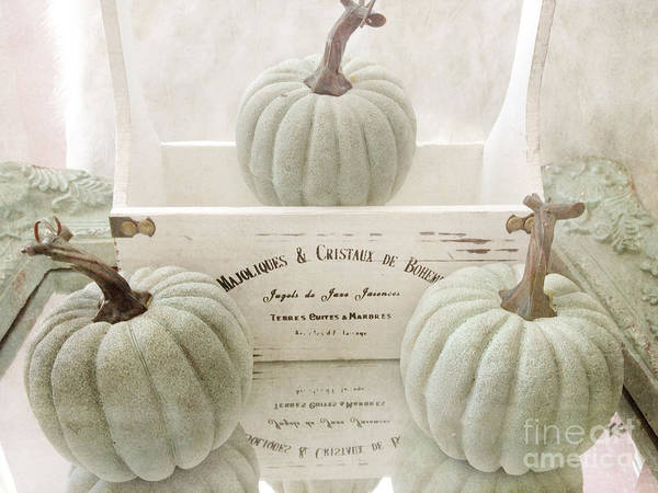 Pumkin Wall Art - Photograph - Shabby Chic Pastel White Vintage French Basket Of Pumpkins by Kathy Fornal