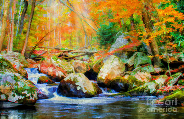 Digital Effect Photograph - Shades Of Autumn by Darren Fisher