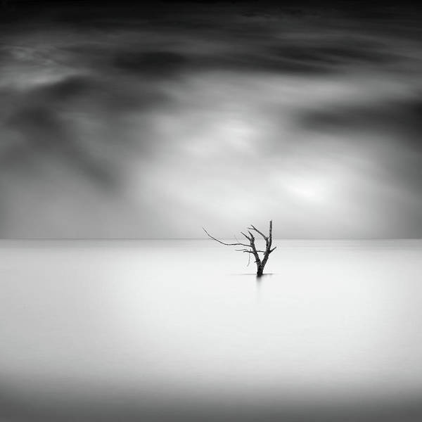 Wall Art - Photograph - Shades Of Gray by George Digalakis