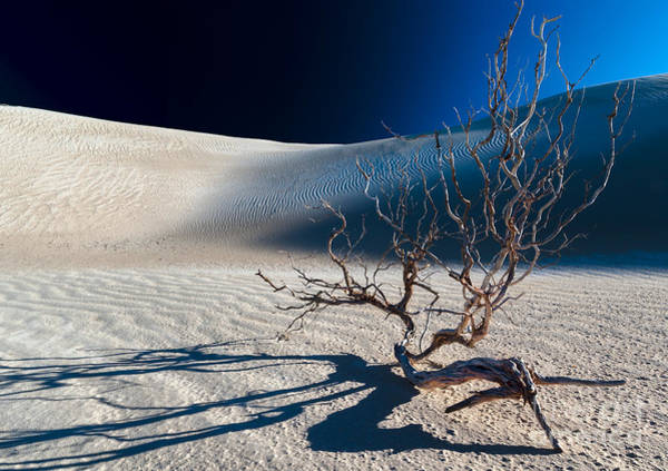 Photograph - Shadow Night Falls by Julian Cook