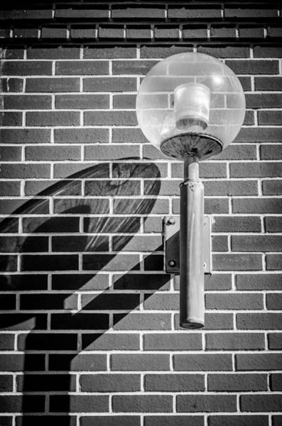 Photograph - Shadow Of A Lamp - Bw by Carolyn Marshall