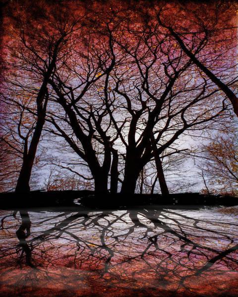 Photograph - Shadow Secrets by Bob Orsillo