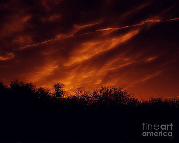 Digital Effect Photograph - Shadowlands 7 by Peter Awax