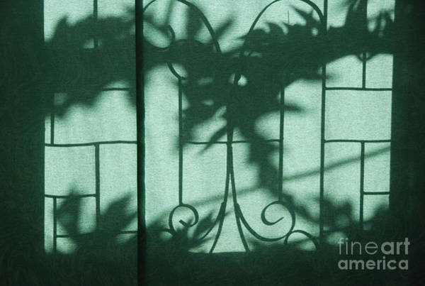 Photograph - Shadows 4 by Fran Woods