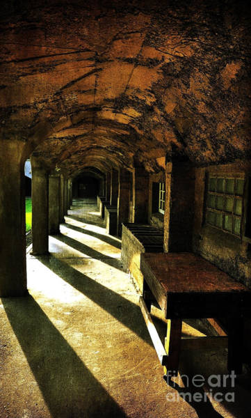 Shadows And Arches I Art Print