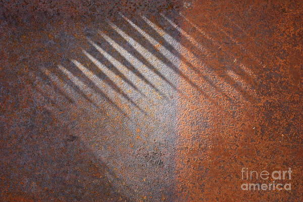 Photograph - Shadows And Rust by Carol Groenen
