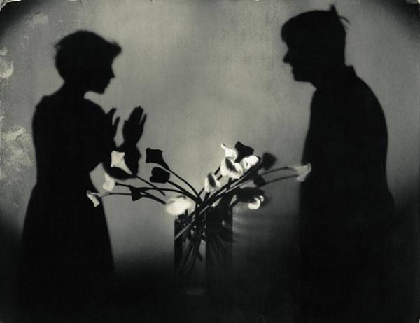 Silhouette Photograph - Shadows By Flowers In A Page Of Actorplasms by Edward Steichen