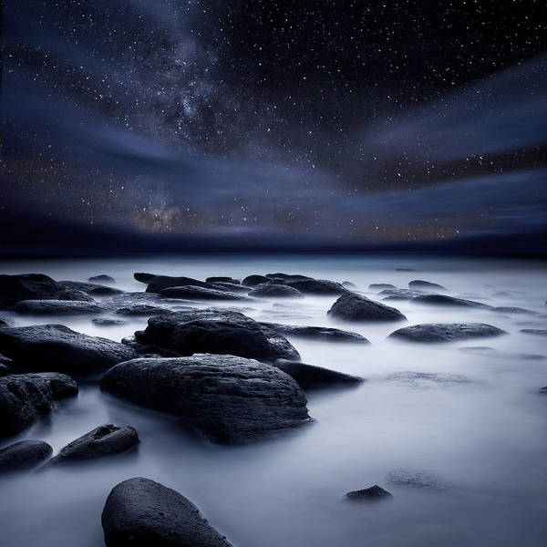 Photograph - Shadows Of The Night by Jorge Maia