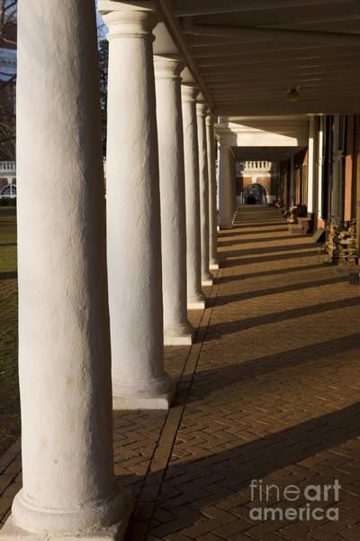 Wall Art - Photograph - Shadows On The Lawn University Of Virginia by Jason O Watson
