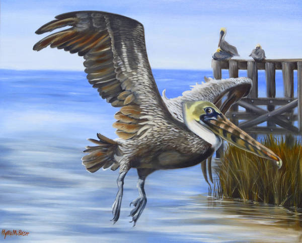 Wall Art - Painting - Shadowy Pelican In Flight by Phyllis Beiser