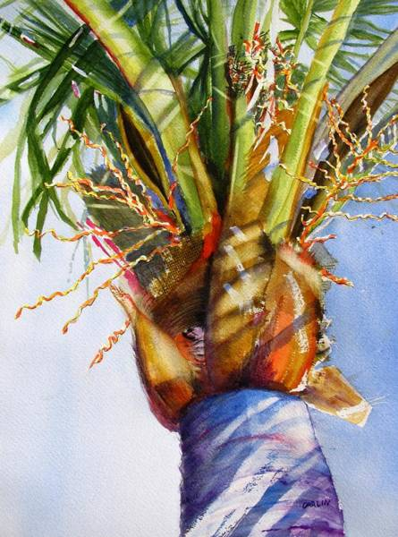 Coconut Painting - Shady Palm Tree by Carlin Blahnik CarlinArtWatercolor
