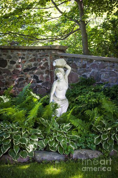 Photograph - Shady Perennial Garden by Elena Elisseeva
