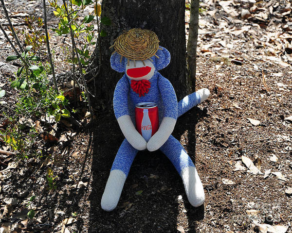 Sock Monkey Photograph - Shady Siesta by Al Powell Photography USA