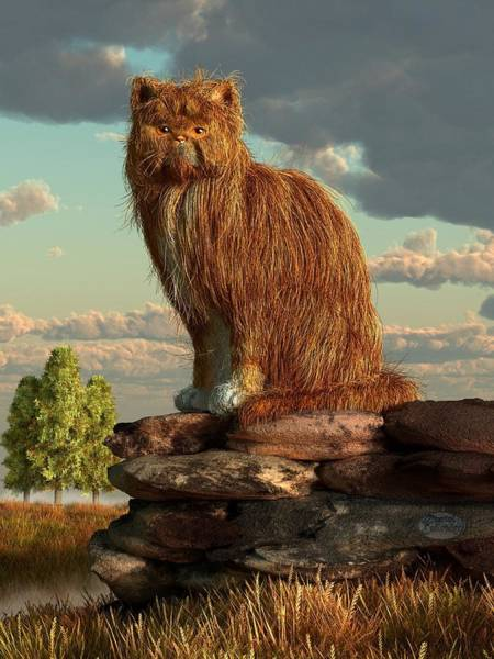 Furry Digital Art - Shaggy Cat by Daniel Eskridge