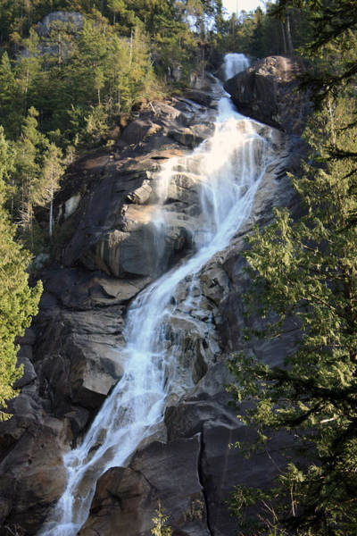 Photograph - Shannon Falls by Gerry Bates