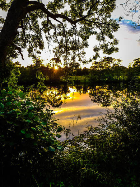 Photograph - Shannon River Sunset At Roosky by James Truett