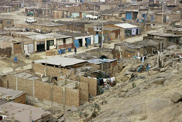 Lima Photograph - Shanty Town by Pasquale Sorrentino/science Photo Library