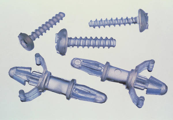 Wall Art - Photograph - Shape Memory Polymer Screws by Jerry Mason/science Photo Library