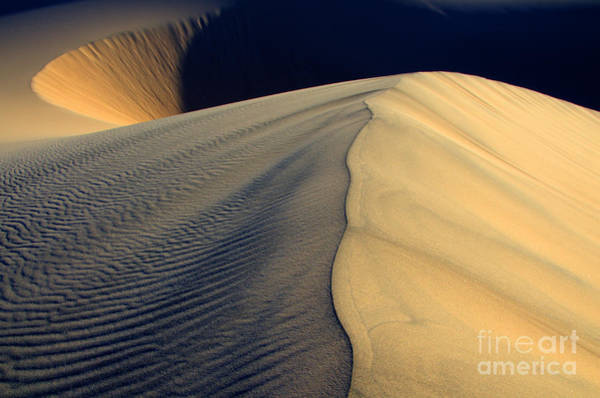 Death Valley Photograph - Shape Shifter Death Valley California by Bob Christopher