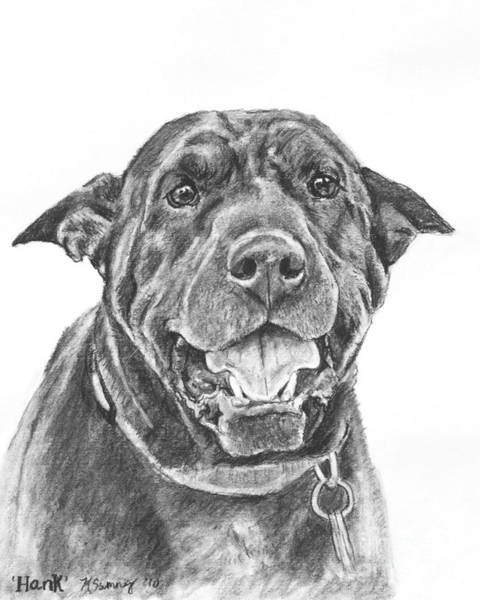 Drawing - Shar-pei Mix Dog by Kate Sumners