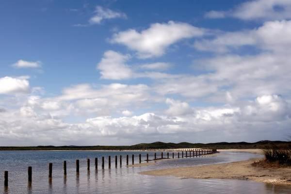 Photograph - Shark Bay Western Australia by David Rich
