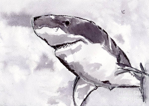 Black Wall Art - Painting - Shark by Michael Rados