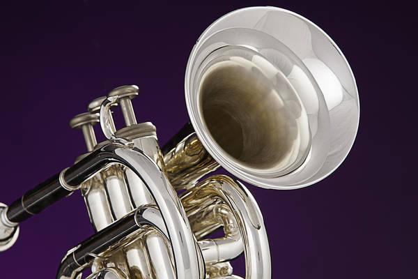 Photograph - Sharp Silver Trumpet by M K Miller