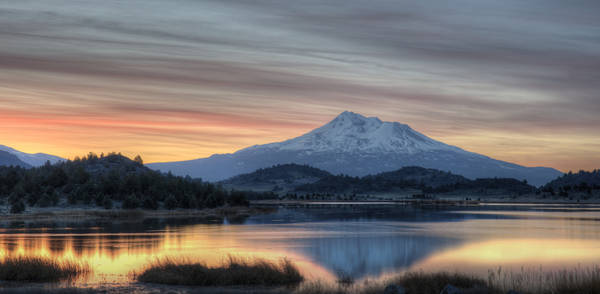 Photograph - Shasta Morning by Loree Johnson